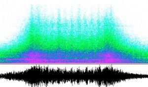 sonagramme-300x177